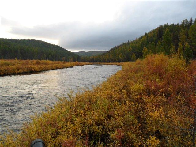 Река Турка