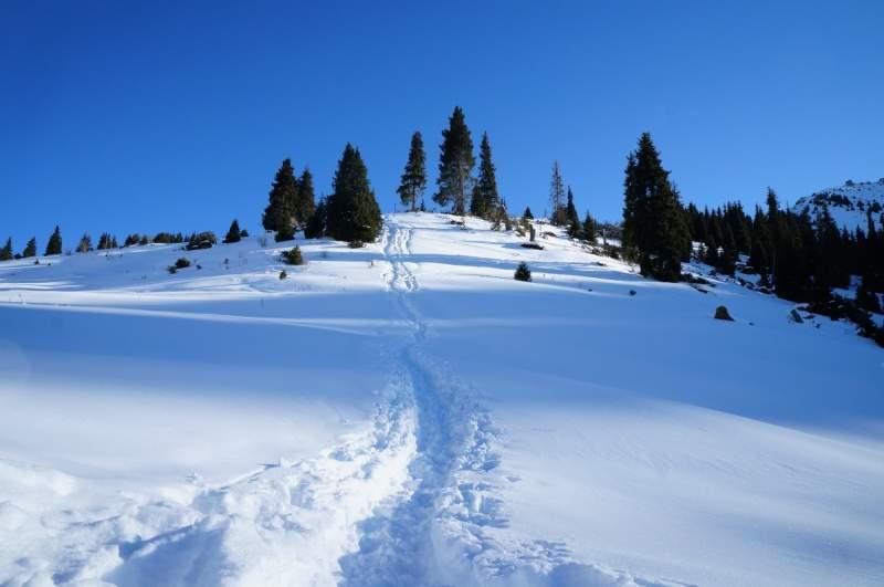 Путь на вершину Три брата 2860 м