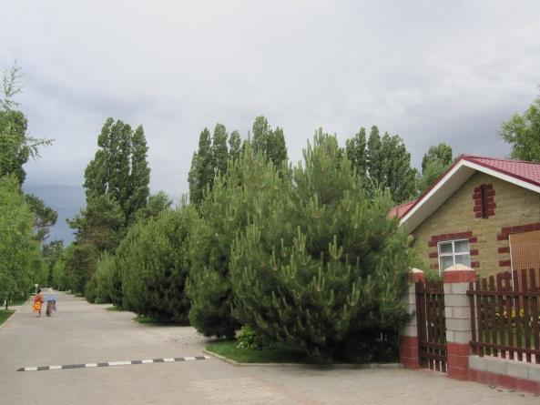 Центр отдыха Радуга Иссык-Куль