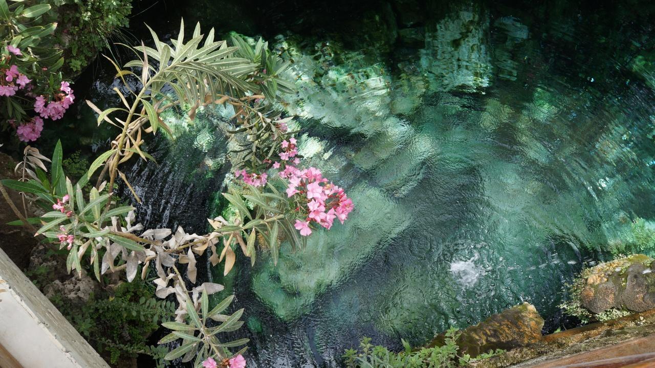 Горячий источник в бассейне Клеопатры в Памуккале