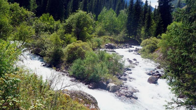 Слияние рек Тургень и Чин Тургень