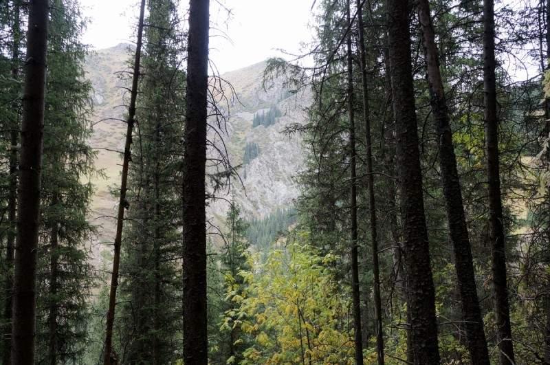 Ущелье Казачки - ответвление Каскеленского ущелья