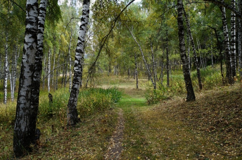 На пути к Казачьим озерам