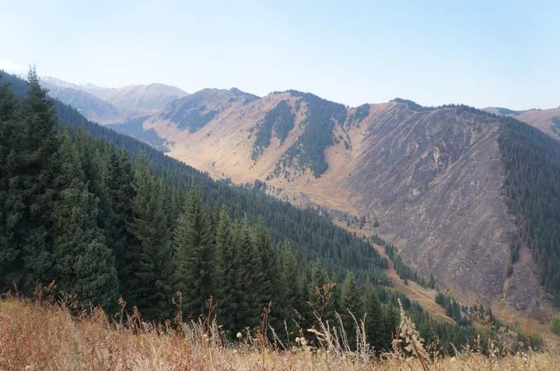Вид на Каргалинское ущелье