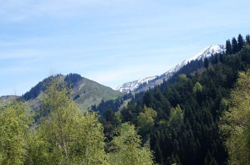 Гора Смотровая (2350 м) и вершина Юный геолог (3227 м)