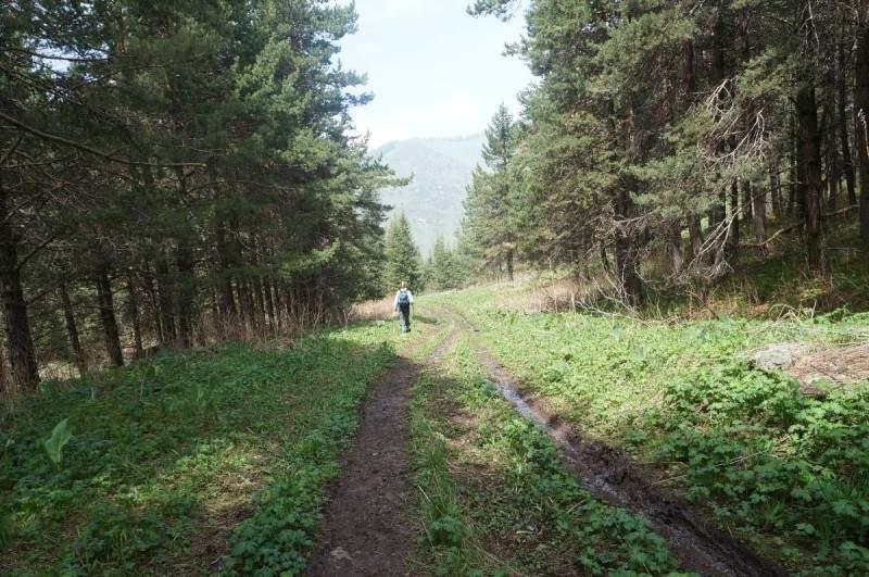 Спуск к поляне на Казачке