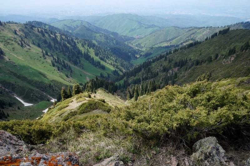 Вид на Бутаковское ущелье с Бутаковского перевала