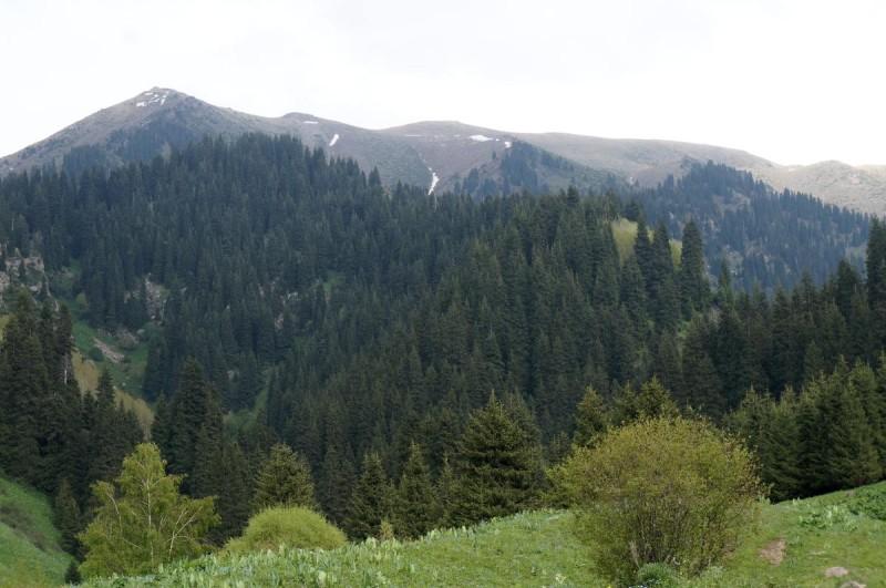 Бутаковский гребень с вершинами, расположенными на нем - Пионерский (Букреева), Котырбулак, и также перевал Бутаковский
