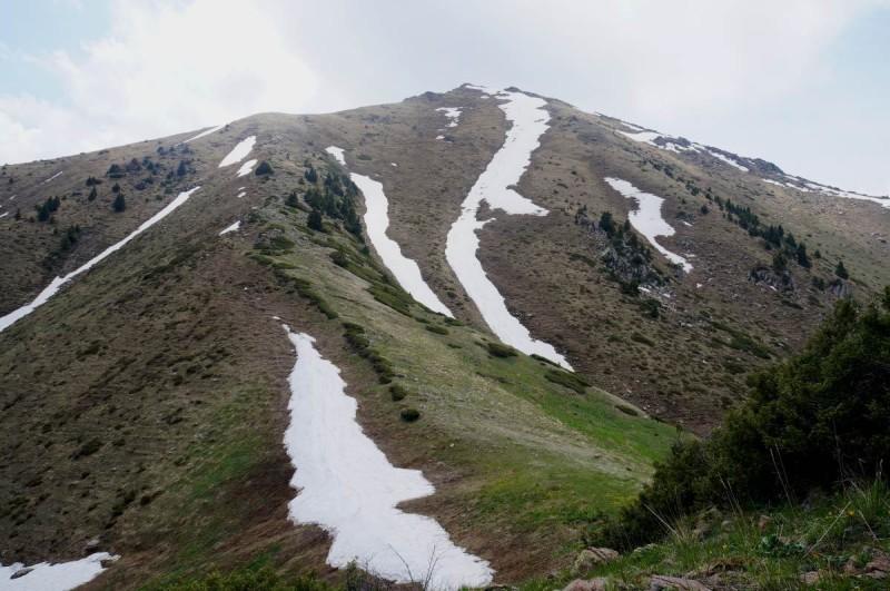 Пик Пионерский (Букреева) 3010 м