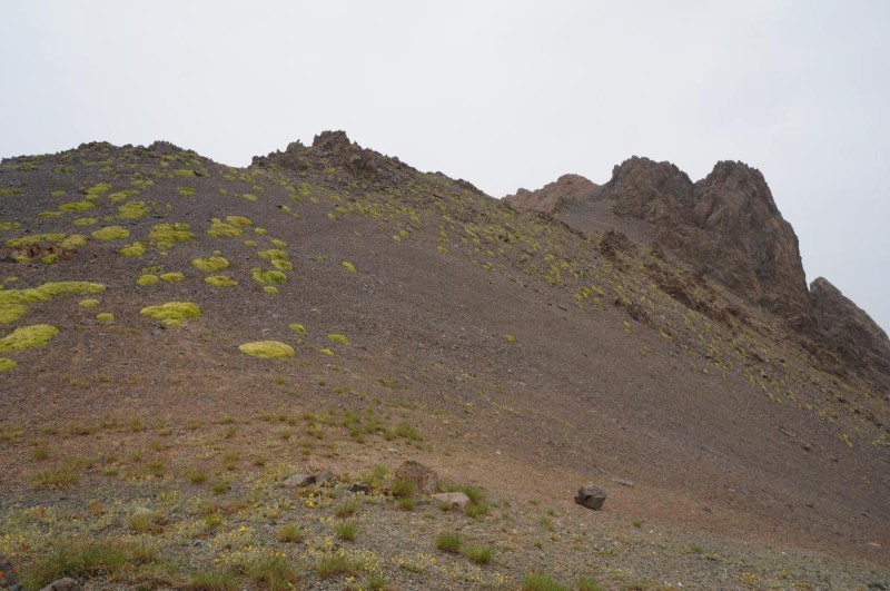 Пик Каргалинский (3675 м), вид с перевала Беркут Тас