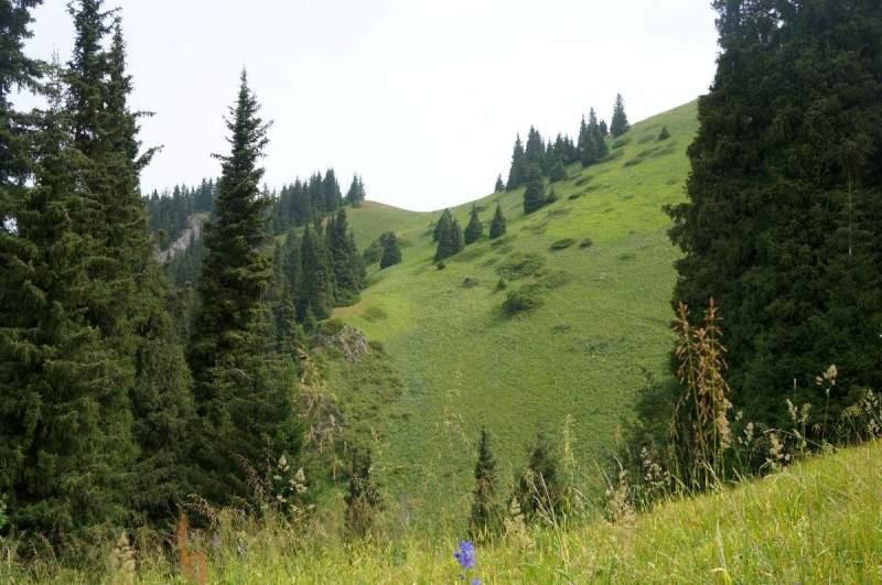 Перевал Каскабас (2550 м) со стороны Каргалинского ущелья