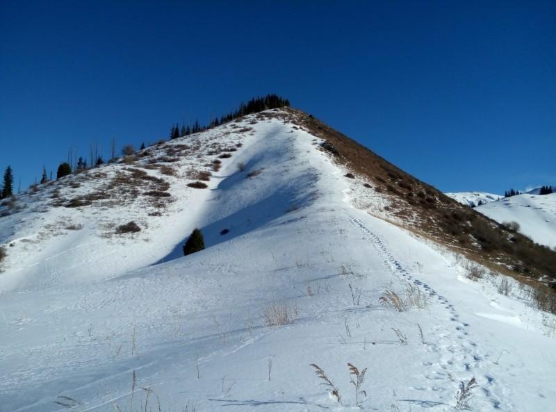 Гора Смотровая 2350 м