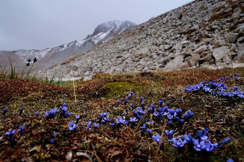 На пути к пику Крошка, на втором плане пик Туран(3970 м)