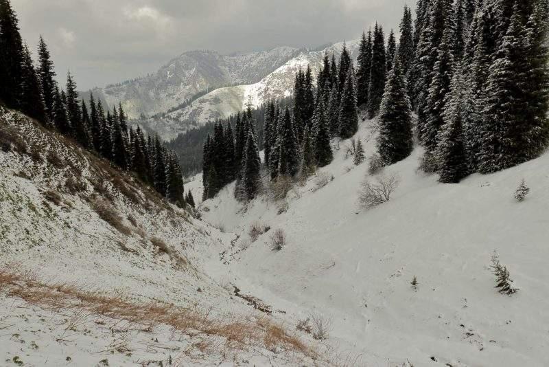 На спуске с пер. Лесной в ущелье Котырбулак