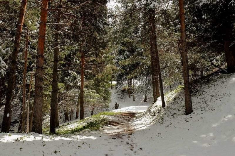 На спуске с Кимасаровского перевала в Бутаковское ущелье