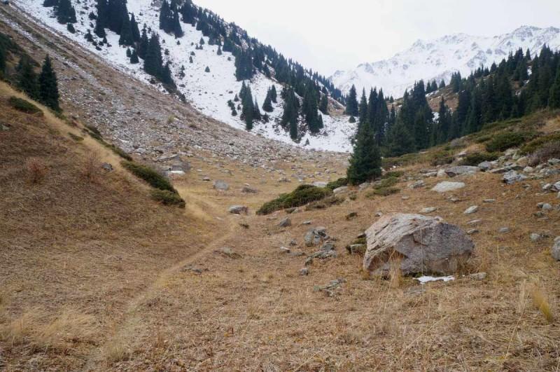 Короткий треккинг от отеля Альпийская роза, через ущелье Шукур, с выходом к Большому алматинскому озеру