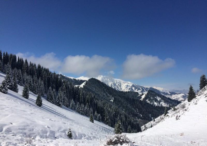 На перевале Лесной 2250 м