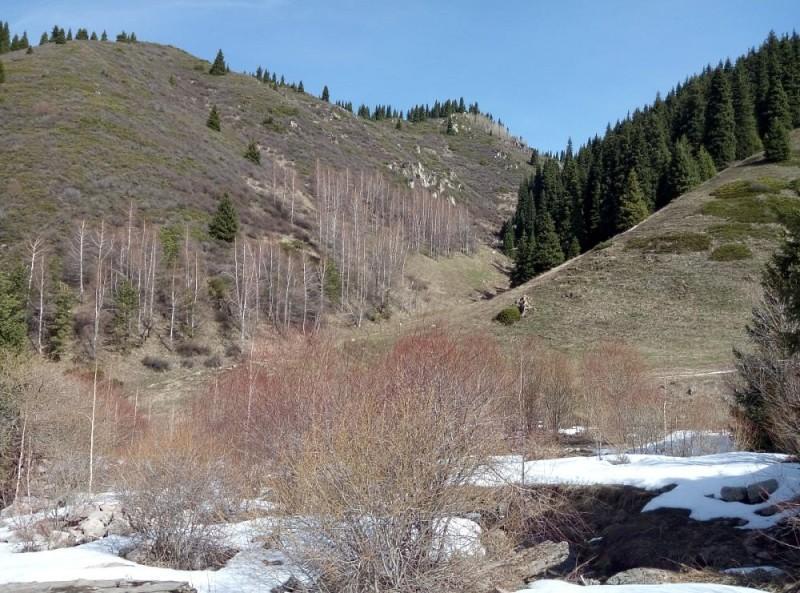 Поворот в отщелок, ведущий на перевал Лесной