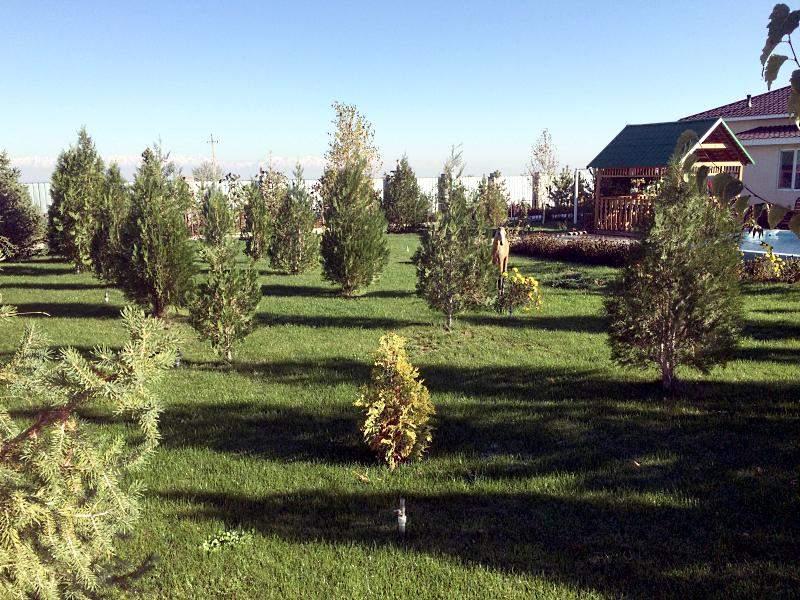 Зеленая территория зоны отдыха Кара Дала