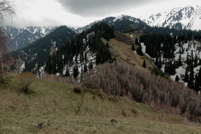 Кимасаровский перевал 2060 м