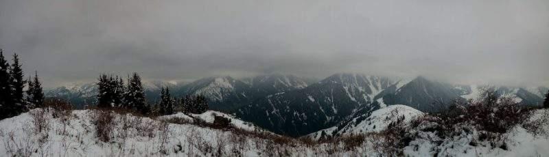 Панорама с Волчьей горы