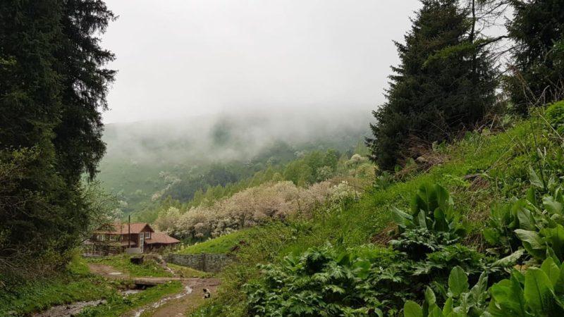 Кимасаровское ущелье весной