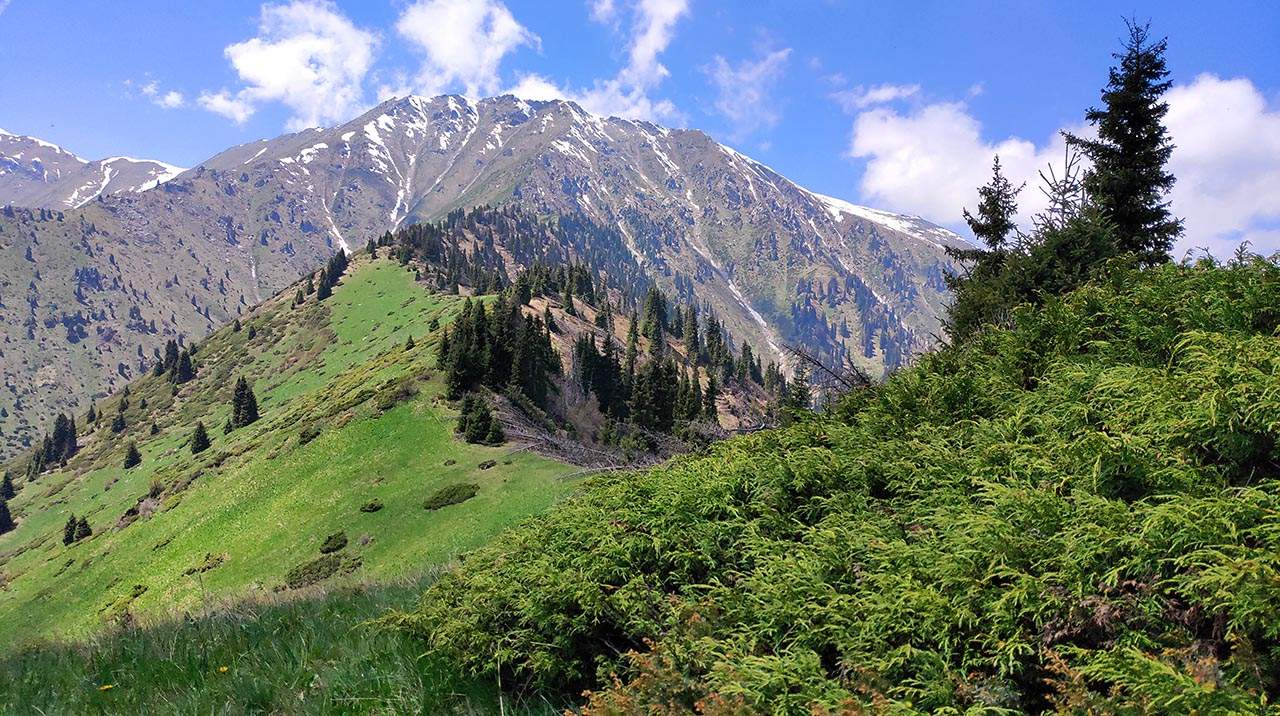 Вид на Кумбель с горы Горелки