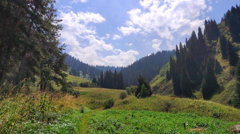 Перевал Лесной со стороны Еликсая