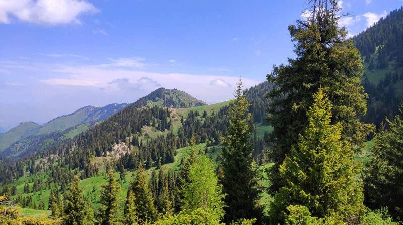 Вид на начало плато Актас