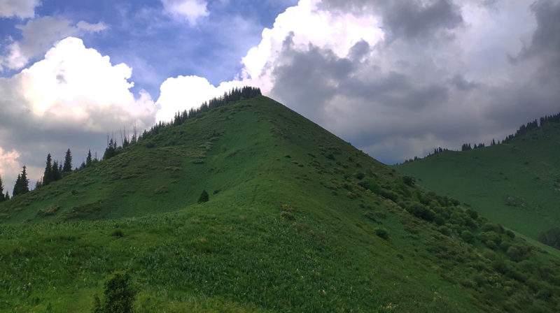 Гора Смторовая